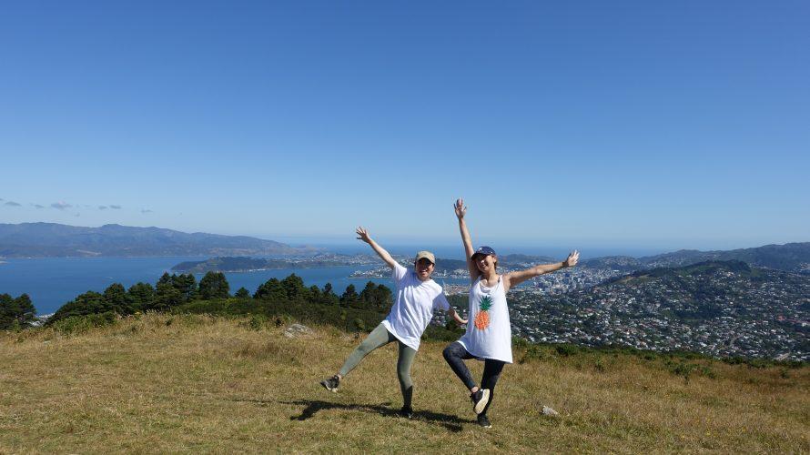 野うさぎ見たよ【Mt.Kaukau】⛰